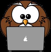 looking to earn money online