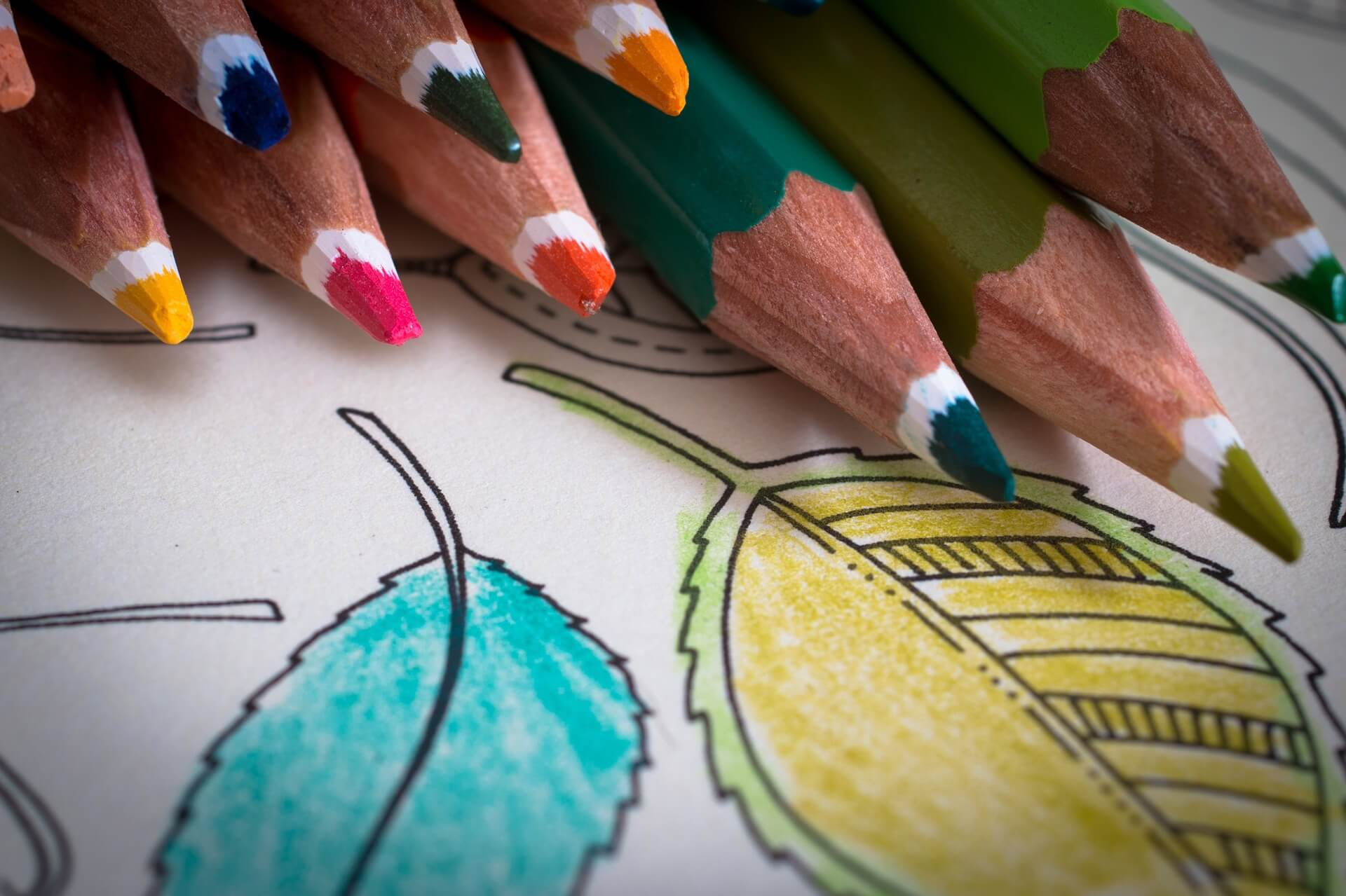 coloring in for adults